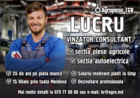 Vânzător - consultant sectia auto electrica