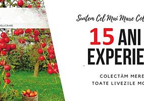 Suntem cel mai mare colector de mere la suc! 15ani ajutam agricultorii