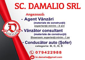 SC DAMALIO SRL
