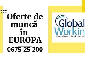 Lucru în EUROPA! AVEM posturi vacante în: AGRICULTURĂ; CONSTRUCȚII